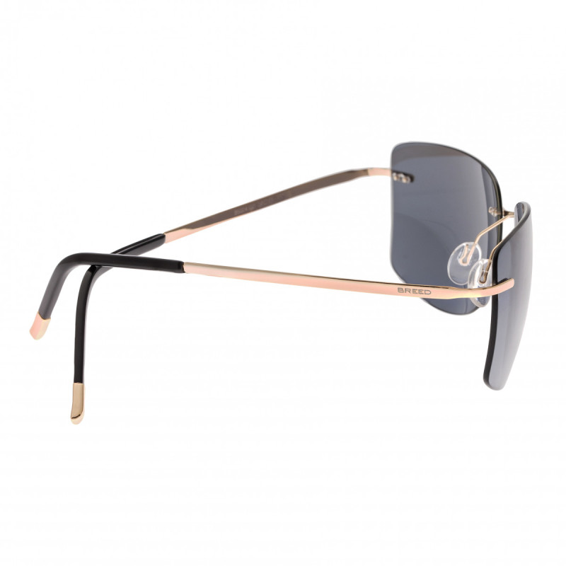 Breed Aero Polarized Sunglasses - Gold/Black BSG041GD