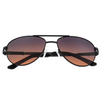 Breed Leo Titanium Polarized Sunglasses - Black/Brown BSG051BK