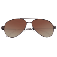 Breed Void Titanium Polarized Sunglasses - Brown/Brown BSG059BN