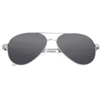 Breed Void Titanium Polarized Sunglasses - Silver/Black BSG059SL