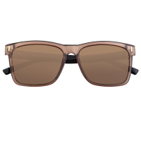 Breed Pictor Polarized Sunglasses - Brown/Black BSG065BN
