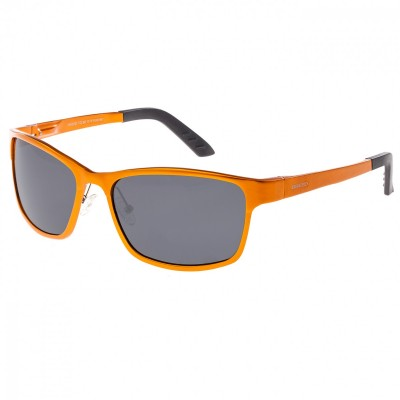 Breed Hydra Aluminium Polarized Sunglasses - Silver/Silver BSG022SR